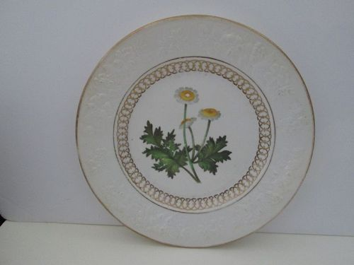 English porcelain plate with hand painted Fever Few flowers, c. 1820