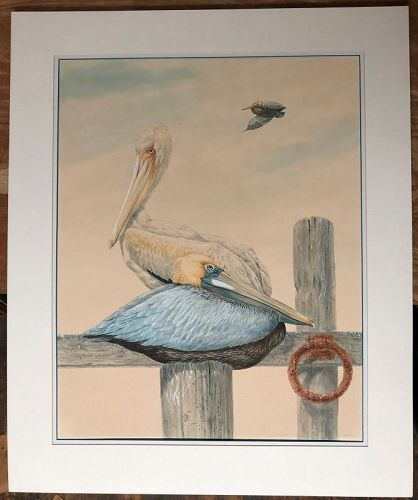 Large watercolor of Pelicans by Robin Hill, 1974
