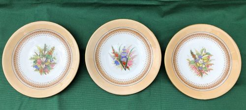 3 Royal Worcester hand painted floral plates. England 1877
