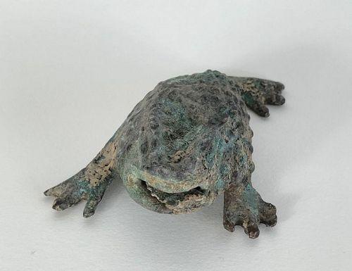 Gama frog