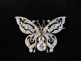 Edwardian Diamond & Ruby Butterfly Pin/Pendant