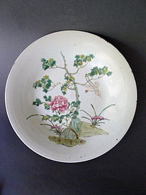 A large, very charming, early Yongzheng enameled dish