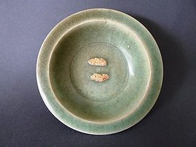 Extremely rare Longquan bluish green biscuit twin fish dish