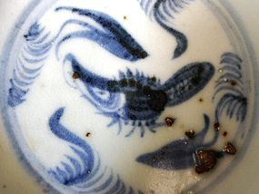 """A lovely Ming Dynasty Hongzhi Period blue and white """"Fish"""" Dish"""