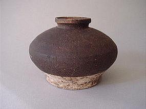 Sawankhalok ware jar !