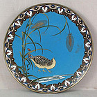 19c Japanese cloisonne PLATE quail and millet