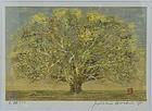 Joichi HOSHI print GREAT TREE (SMALL) 1975