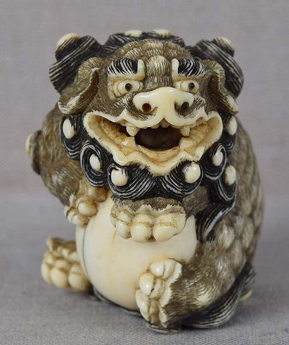 Early 19c Kyoto netsuke SHISHI with ball
