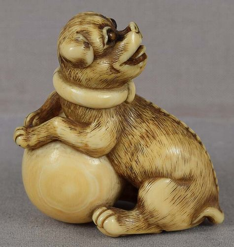18c Kyoto netsuke DOG with ball