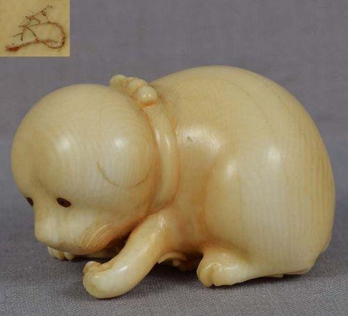 19c netsuke PUPPY & bamboo by CHOKUSAI