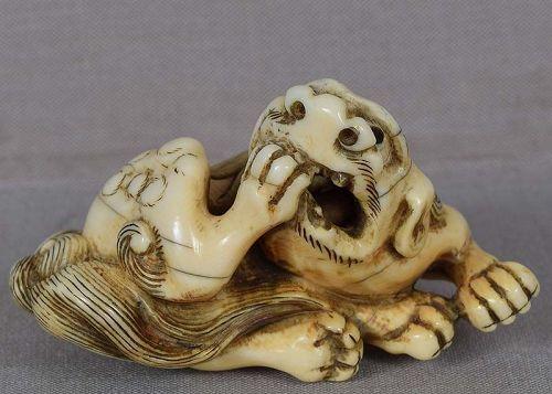 18c netsuke SHISHI biting its foot