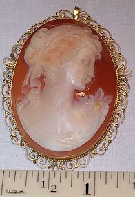 Lovely Vintage 18k Gold Shell Cameo Brooch Pendant Lady