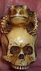 Antique Ivory Meiji Japanese Okimono Skull Frog Carving