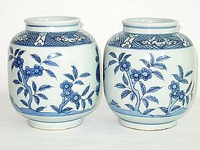 Qing Dynasty - Pair of Blue and White Flower Jar
