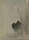 Okuhara Seiko Woodblock Print - Moorhens SOLD