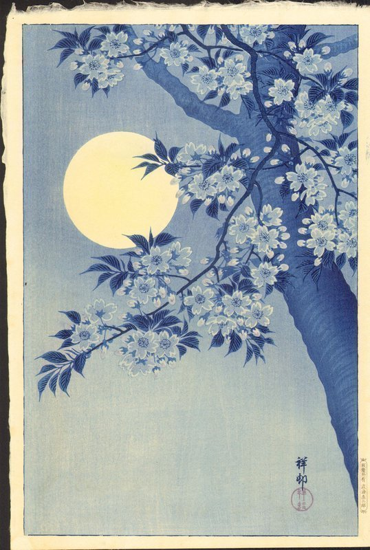 Ohara Koson Woodblock Print- Moon and Cherry - First edition SOLD
