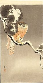 Ohara Koson Japanese Woodblock Print - Goshawk SOLD