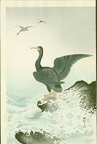 Ohara Koson Japanese Woodblock Print - Cormorants at Coast RARE