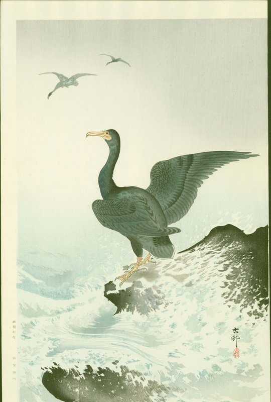 Ohara Koson Japanese Woodblock Print - Cormorants at Coast RARE SOLD