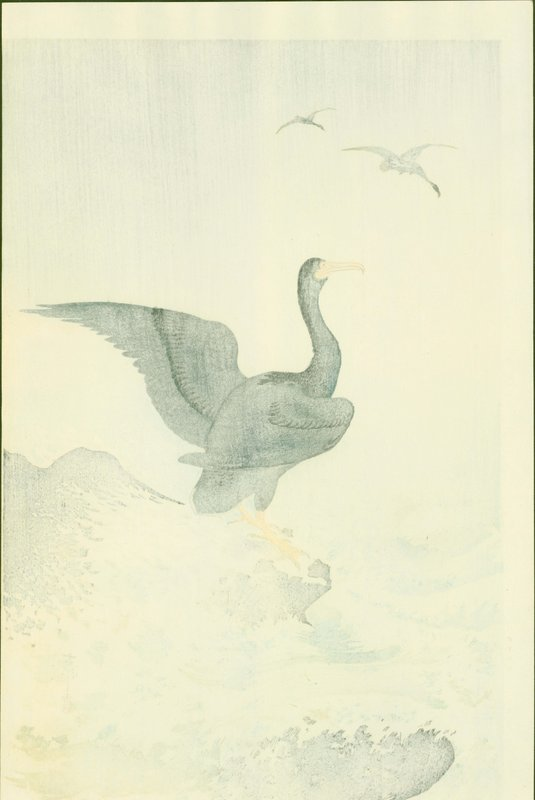 Ohara Koson Japanese Woodblock Print - Cormorants at Coast RARE