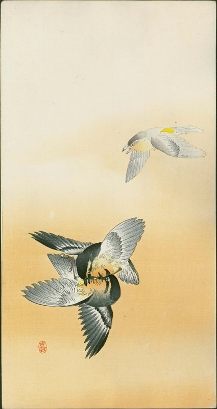 Ohara Koson Japanese Woodblock Print - Birds in Orange Sky - Rare