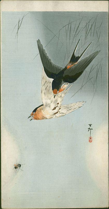 Ohara Koson Japanese Woodblock Print - Two Barn Swallows in Flight