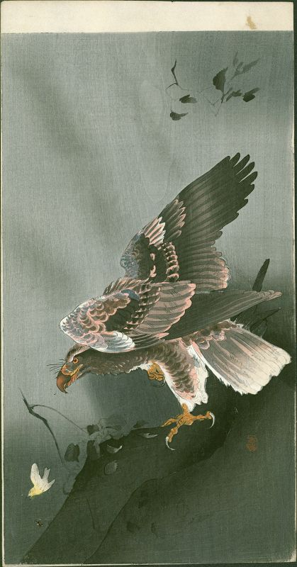 Ohara Koson Japanese Woodblock Print - Eagle with Outspread Wings