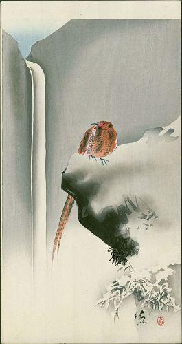 Ohara Koson Japanese Woodblock Print - Pheasant on Rock with Waterfall