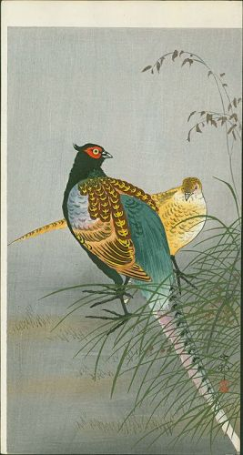 Ohara Koson Japanese Woodblock Print - Pheasants Between Grasses