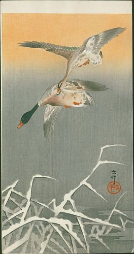 Ohara Koson Woodblock Print - Mallards in Flight - Rare Version