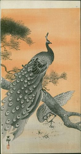 Ohara Koson Japanese Woodblock Print Peacock And Peahen
