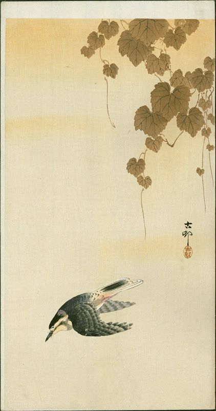 Ohara Koson Japanese Woodblock Print - Bird in Yellow Sky - Ivy Above