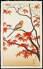 Toshi Yoshida Japanese Woodblock Print - Bird in Autumn