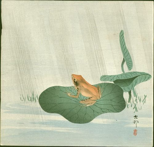 Ohara Koson Japanese Woodblock Print - Frog on Lotus Leaf