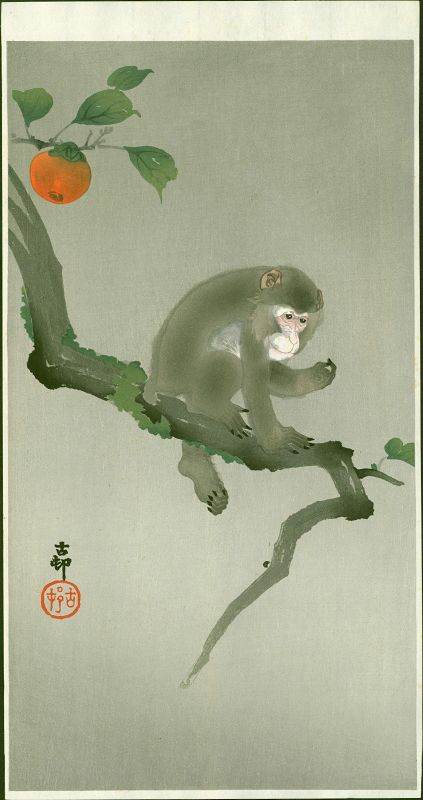 Ohara Koson Japanese Woodblock Print - Monkey in a Persimmon Tree