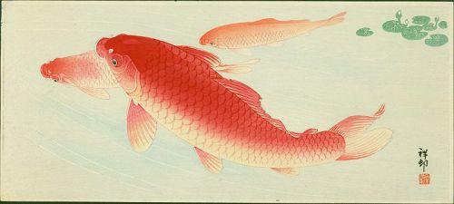 Ohara Shoson (Koson) Japanese Woodblock Print - Three Red Koi Carp