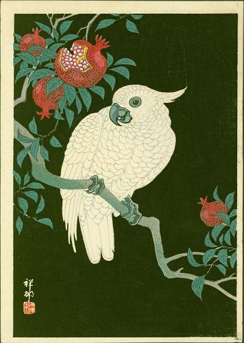 Ohara Shoson (Koson) Japanese Woodblock Print - Cockatoo Pomegranate
