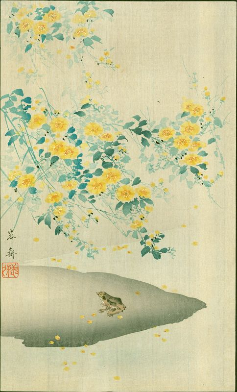 Yosai Kikuchi Japanese Woodblock Print - Frog and Yellow Flowers