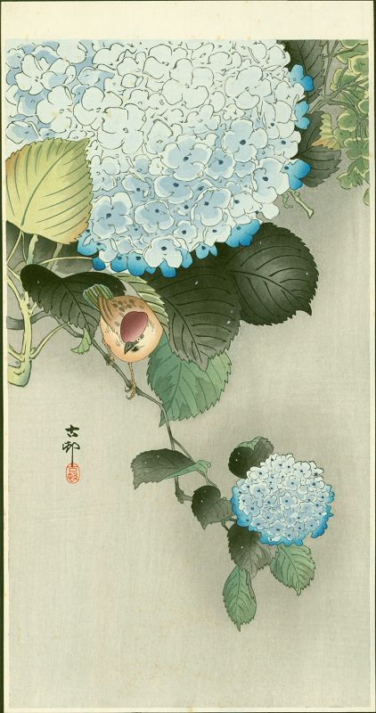 Ohara Koson Japanese Woodblock Print - Sparrow on Hortensia SOLD