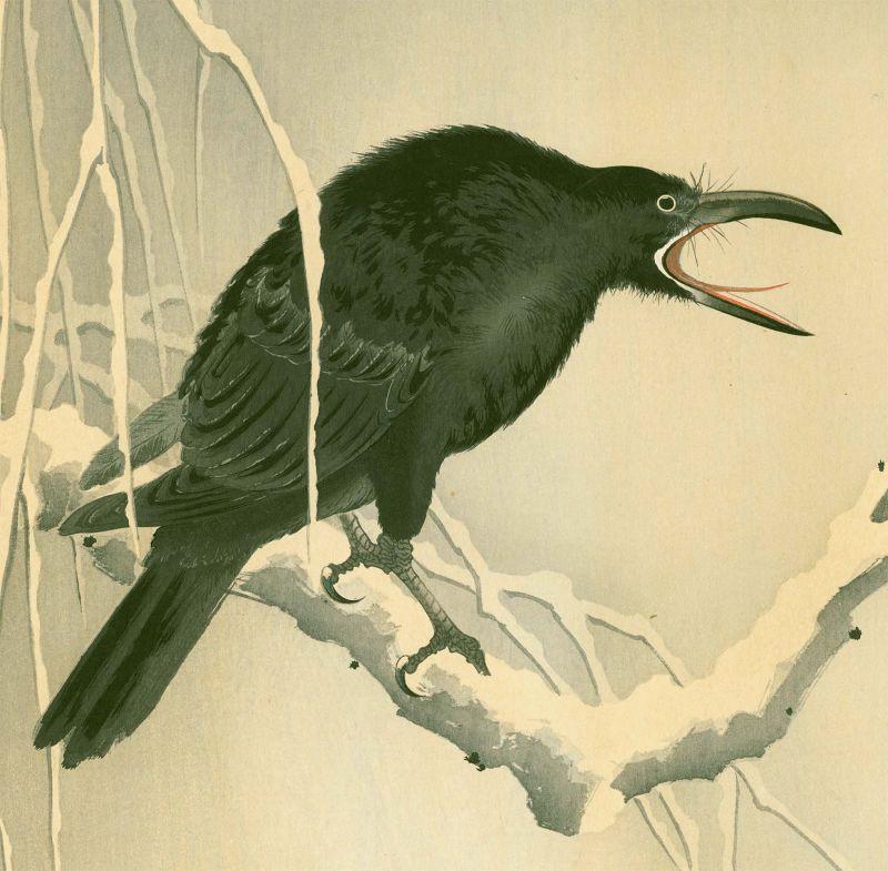 Ohara Koson Japanese Woodblock Print - Cawing Crow - Rare SOLD