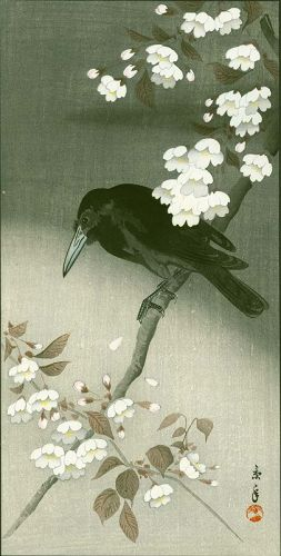 Imao Keinen Japanese Woodblock Print - Crow and Flowering Cherry SOLD