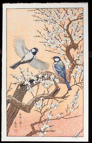 Toshi Yoshida Japanese Woodblock Print - Birds in Spring - Plum Tree