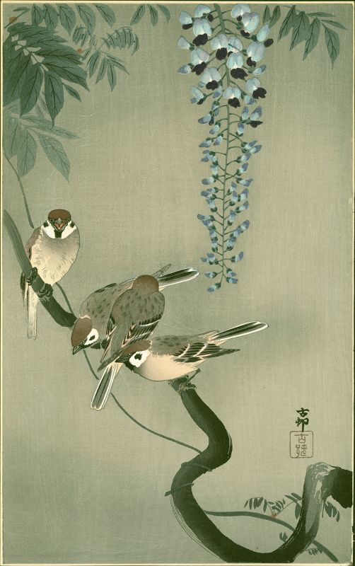 Ohara Koson Japanese Woodblock Print - Sparrows and Wisteria
