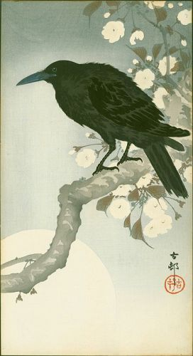 Ohara Koson Japanese Woodblock Print - Crow on Cherry Branch - RARE