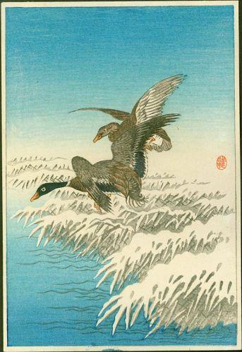 Ohara Shoson (Koson) Woodblock Print - Two Ducks Snowy Reeds - Rare