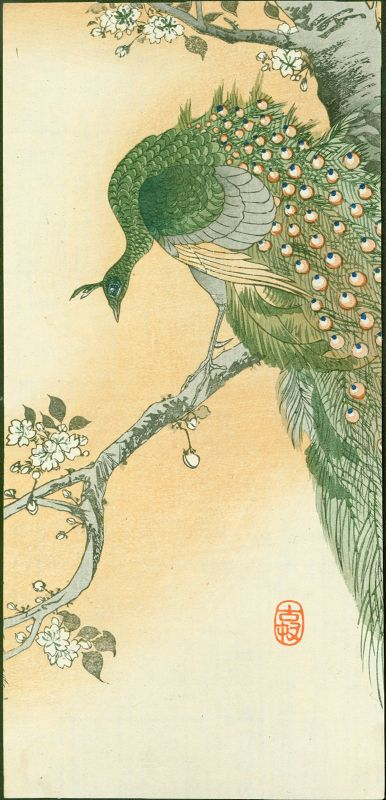 Ohara Koson Woodblock Print - Peafowl on Flowering Cherry SALE OF WEEK