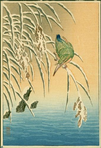 Ohara Koson Japanese Woodblock Print - Kingfisher on Snowy Reeds -Rare