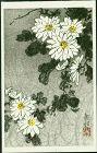 Ide Gakusui Japanese Woodblock Print - Chrysanthemums SOLD