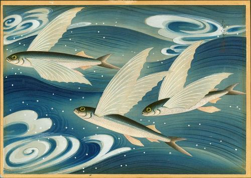 Ohno Bakufu Woodblock Print - Flying Fish (Tobiuo) - Ltd. Ed. SOLD