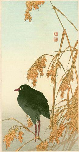 Gyosui Kawanabe Japanese Woodblock Print - Bird and Barley